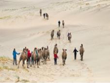 Gobi_Desert
